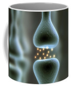Misc. Anatomy Images Coffee Mug