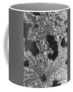 Mitotic Spindle, Tem Coffee Mug