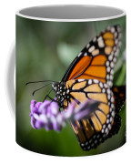 Monarch Danaus Plexippus Coffee Mug