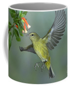 Orange-crowned Warbler Coffee Mug