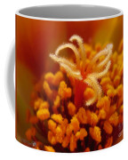 Portulaca In Orange Fading To Yellow Coffee Mug