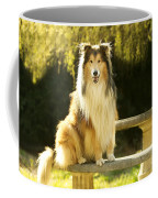 Rough Collie Dog Coffee Mug