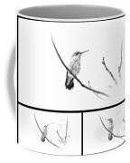 Ruby-throated Hummingbird - Immature Female - Black And White - Archilochus Colubris  Coffee Mug