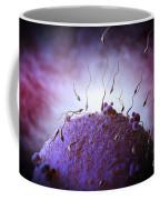 Sperm And Ovum Coffee Mug