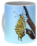 Stock Images Of Galicia Coffee Mug