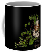 Szene Coffee Mug