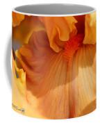 Tall Bearded Iris Named Penny Lane Coffee Mug