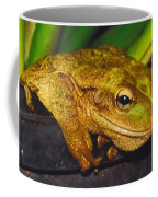 Treefrog Coffee Mug