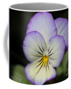 Viola Named Sorbet Lemon Blueberry Swirl Coffee Mug by J McCombie