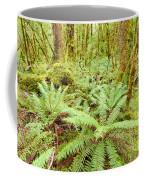 Virgin Rainforest Wilderness Of Fiordland Np Nz Coffee Mug