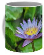 Water Lily 13 Coffee Mug
