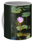Pond Of Water Lily Coffee Mug