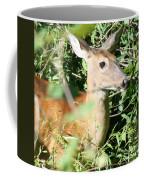 White Tailed Deer Portrait Coffee Mug