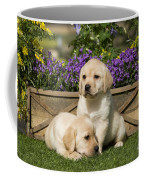 Yellow Labrador Puppies Coffee Mug