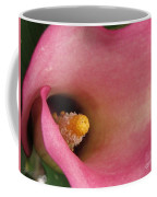 Zantedeschia Named Mozart Coffee Mug