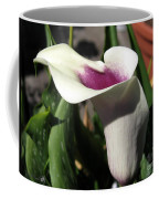 Zantedeschia Named Picasso Coffee Mug