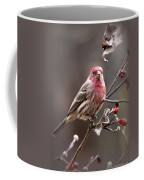4113-005 - Fb Coffee Mug