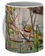 42- Florida Red-bellied Turtle Coffee Mug