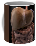 The Digestive System Coffee Mug
