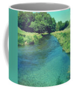 Spring Water Coffee Mug