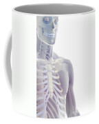 Bones Of The Upper Body Coffee Mug