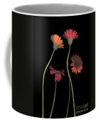 4daisies On Stems Coffee Mug