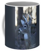 8 Point Buck Coffee Mug
