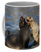Antarctic Fur Seals Coffee Mug