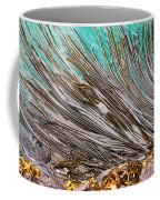 Bull Kelp Blades On Surface Background Texture Coffee Mug