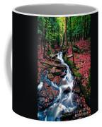 Chesterfield Gorge New Hampshire Coffee Mug by Edward Fielding