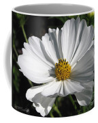 Cosmos Named Sensation Alba Coffee Mug