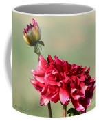 Dahlia Named Caproz Jerry Garcia Coffee Mug