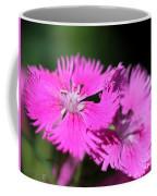 Dianthus Cross Coffee Mug