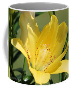 Double Asiatic Lily Named Fata Morgana Coffee Mug