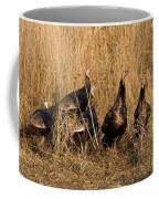 Eastern Wild Turkeys Coffee Mug