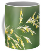 Flowering Brome Grass Coffee Mug