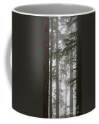 Foggy Coast Redwood Forest Coffee Mug