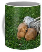 Golden Retriever Puppies Coffee Mug by Linda Freshwaters Arndt