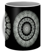 Kaleidoscope Ernst Haeckl Sea Life Series Black And White Set On Coffee Mug by Amy Cicconi