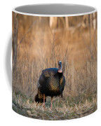 Male Eastern Wild Turkey Coffee Mug