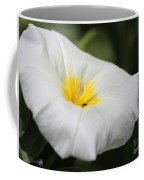 Morning Glory Named White Ensign Coffee Mug