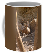 Nubian Ibex Coffee Mug