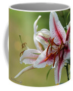 Oriental Lily Named Tiger Edition Coffee Mug
