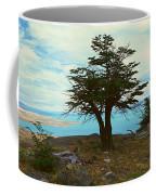 Panoramic View Of Argentinas Largest Coffee Mug