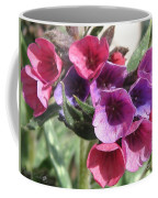 Pulmonaria Named Raspberry Splash Coffee Mug