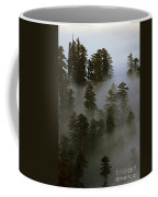 Redwood Creek Overlook With Giant Redwoods Sticking Out Above Lo Coffee Mug