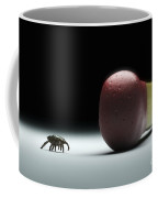 Scale Comparison Of A Tick Coffee Mug