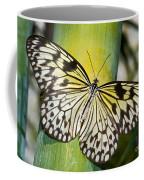 Tree Nymph Butterfly Coffee Mug