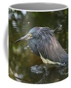 Tri-colored Heron Coffee Mug
