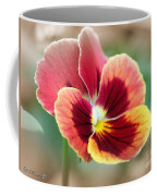Viola Named Penny Red Blotch Coffee Mug